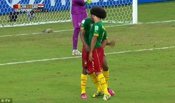 """Cameroon players refuse to take a plane to Africa Cup: """"For every tournament, there is a problem"""""""