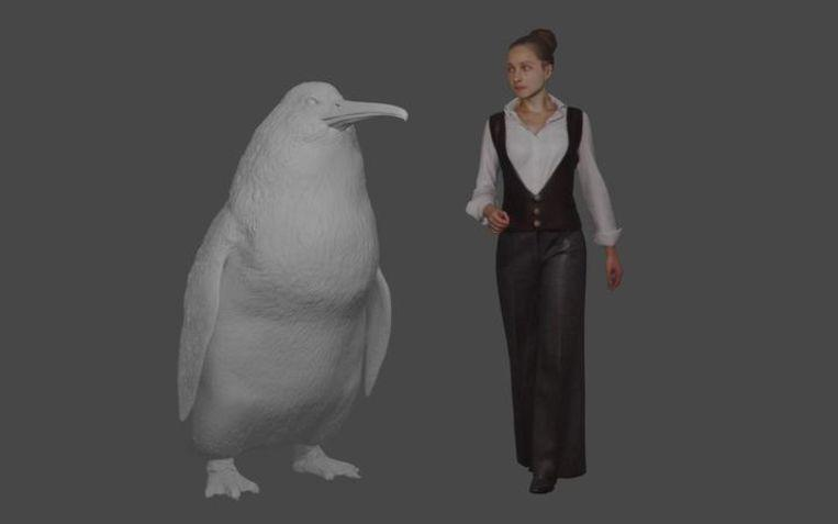"Giant penguin ""as big as human"" found in New Zealand"