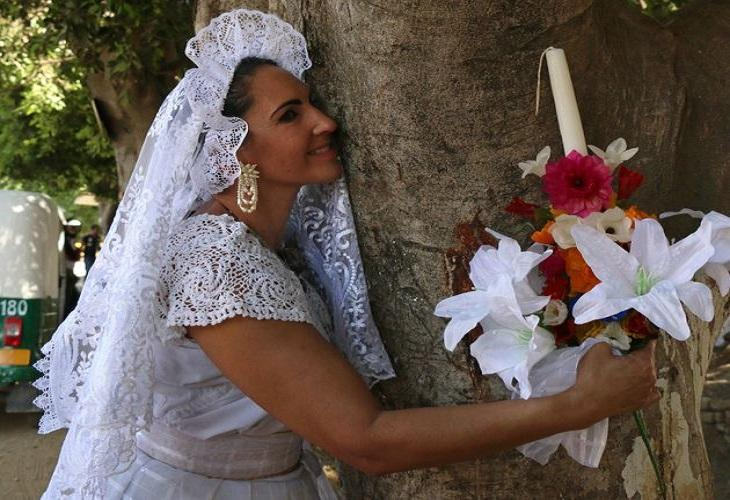 5 people that marry a tree