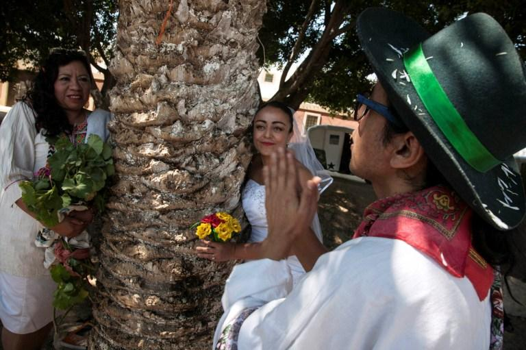 Mexican women (Mexico): 5 people that marry a tree