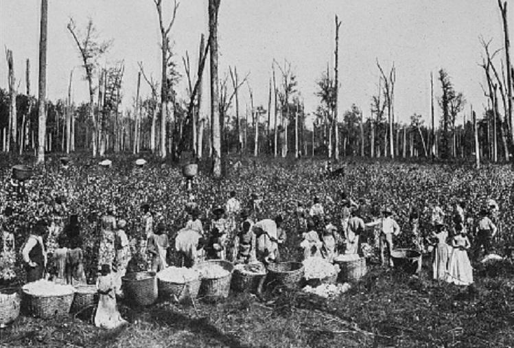 Australian slave traffickers drowned slaves instead of giving them freedom