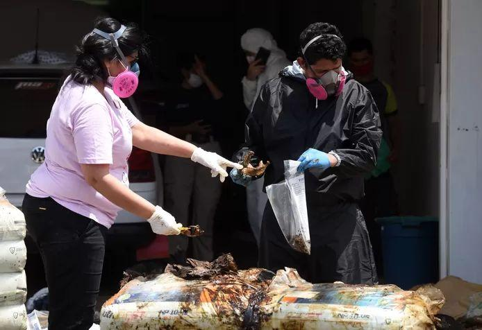 Forensic investigators at the remaining bodies found in the container.
