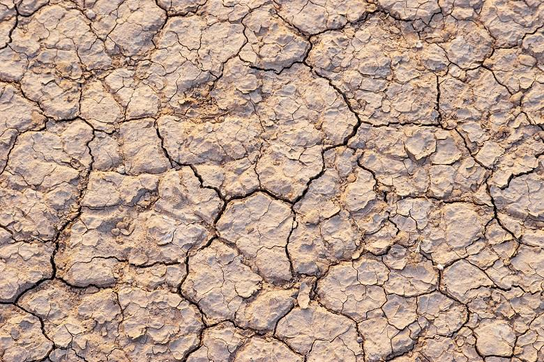 As drought and heat increase in Mongolia, the country's climate is heavily impacted with possible repercussions throughout the northern hemisphere