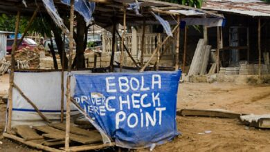 WHO identifies the origin of the new Ebola epidemic in the DRC