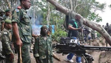Hutu rebels deny murder of Italian ambassador in Congo