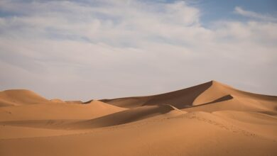 Top 5 largest deserts in the world