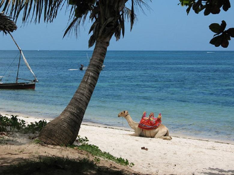 Shanzu beach, Kenya