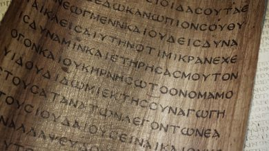 Material biblical texts were recorded: Forgotten ancient technology of making papyrus