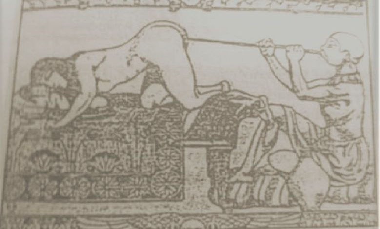Anus blower: One of the worst job in ancient Egyptian history