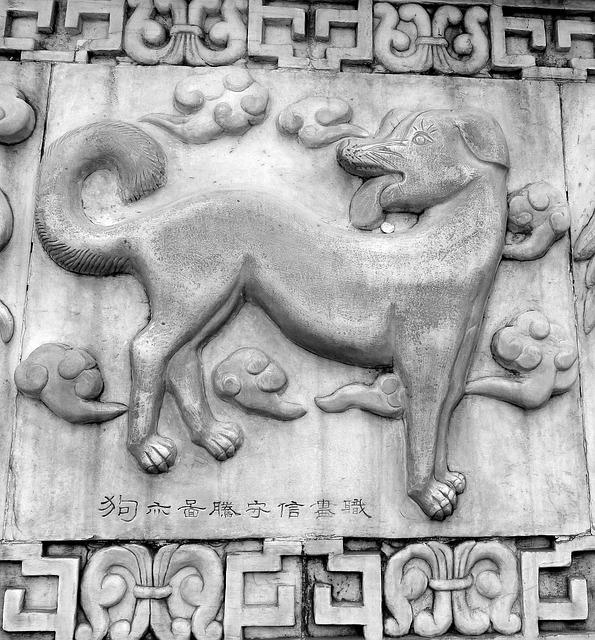 Archaeologists had learned when and why ancient people first tamed dogs